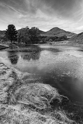 KELLY HALL TARN SWIRL MONO