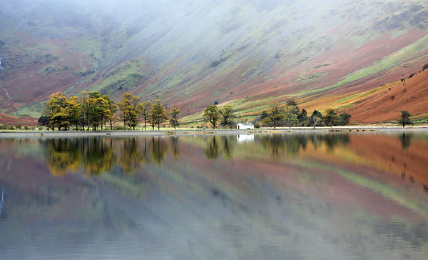 Buttermere Char Hut and the Pines