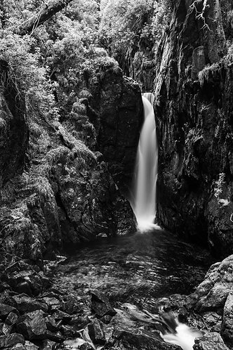STANLEY GHYLL MONO