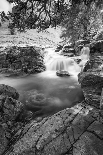 UPPER GALLENY FORCE mono