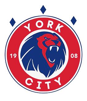 York City Mock Logo.png