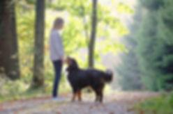 Hundeschule Bea Christen
