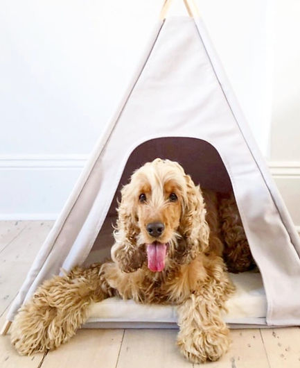 Burrow-pet-bed-teepee_edited.jpg