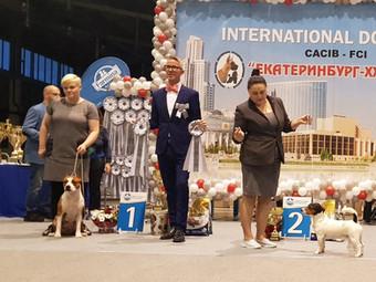 "INTERNATIONAL DOG SHOW CACIB ""Екатеринбург-XXI век"" 2019"