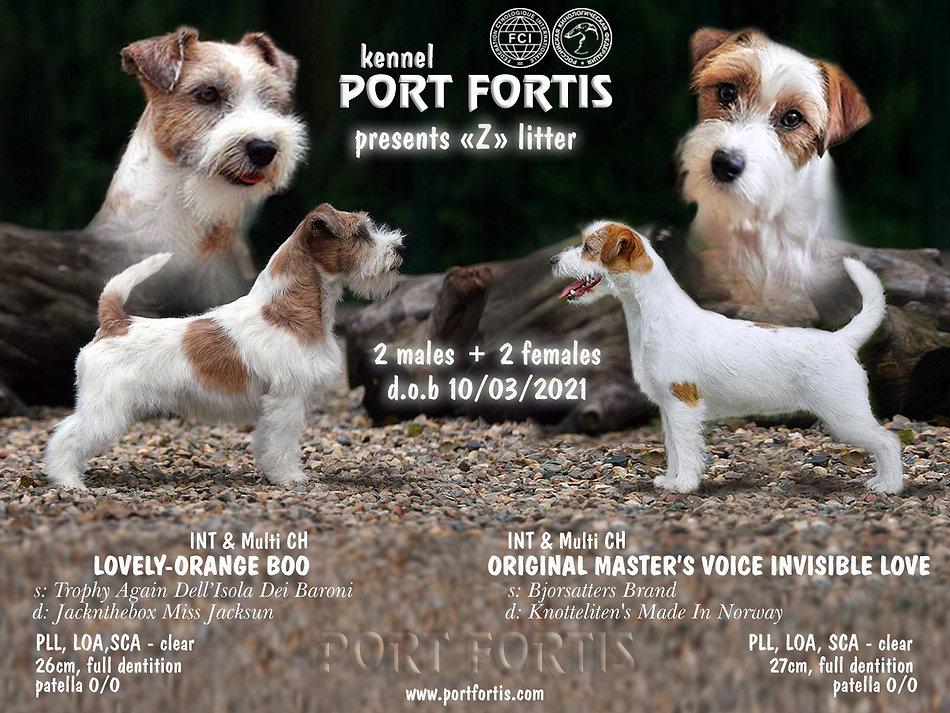 PORT FORTIS Z Litter