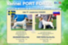 P litter WEB.jpg