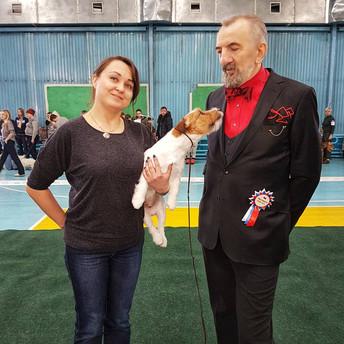 11.02.2018 Региональная выставка собак всех пород САС КЧФ г. Иркутск