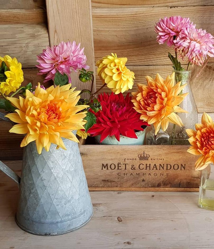 Jam Jar Floral displays