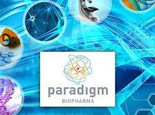 Paradigm Biopharmaceuticals Ltd (ASX:PAR) is an Australian biopharmaceutical company focused on repurposing the drug pentosan polysulphate sodium (PPS) for the treatment of inflammation.
