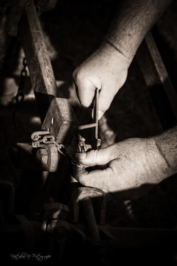 Préparation de la charrue