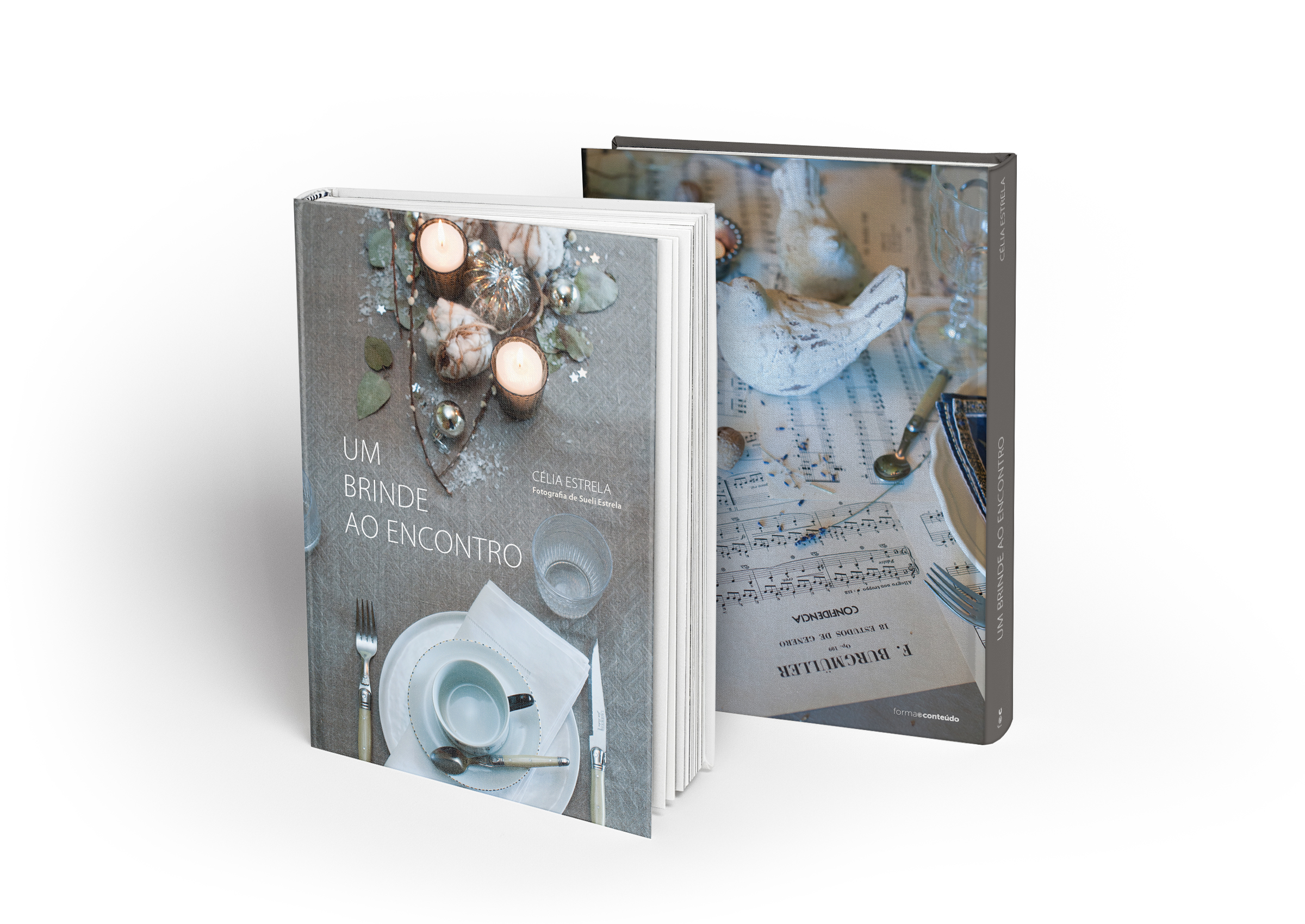 livro da artista célia estrela
