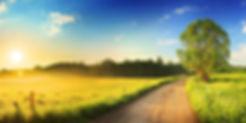 Farmland_Heading_3.jpg