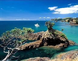 waiheke island cactusbay_island.jpg
