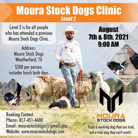 Moura Stock Dogs.jpg