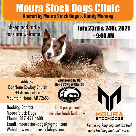 Curso Moura Stock Dogs (2).jpg