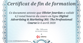 Digital Advertising & Marketing 301: The Professional Course