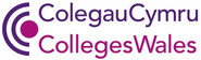 8 - Colleges Wales.jpg