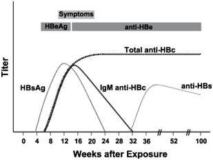 Aalto Bio Reagents Launches Full Suite of HBV Human Plasma