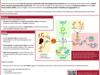 Review of the role of chaperone proteins in schizophrenia and future directions for research