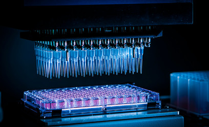 Laboratory photography.jpg