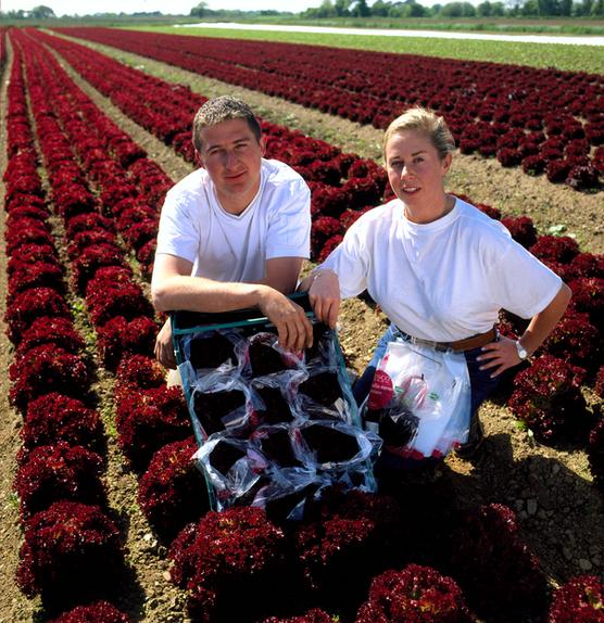 Tesco growers
