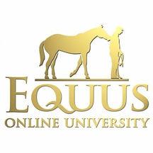 equus online.jpg