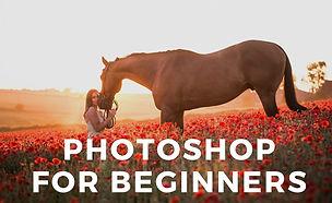 Photoshop for beginners-3.jpg