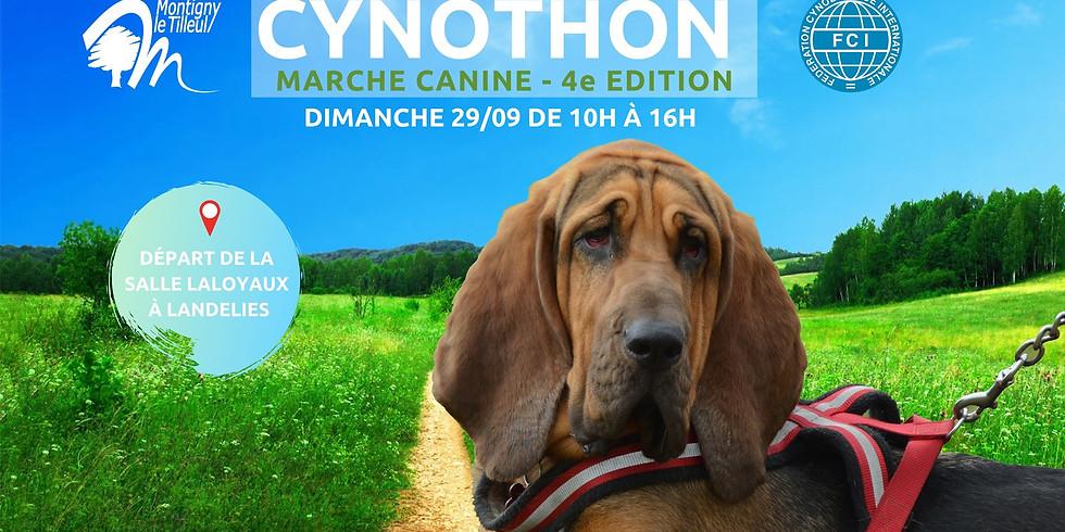Cynothon