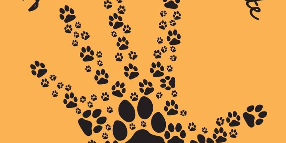 Journée Bien Être Animal Et Balade Canine