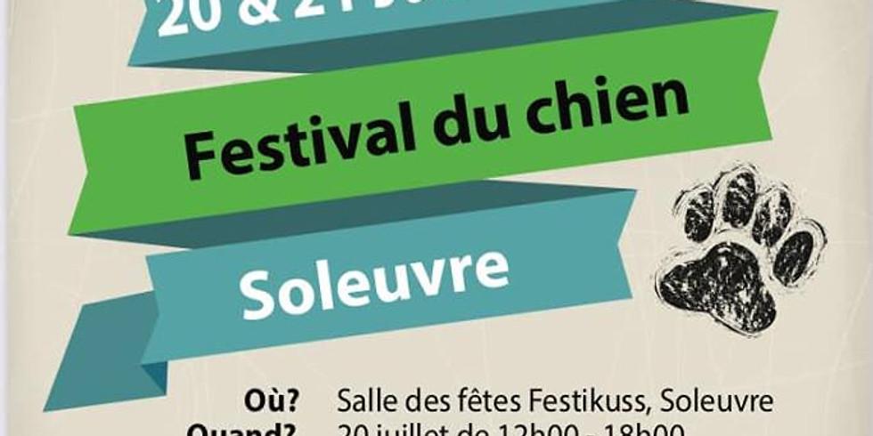 Festival du chien