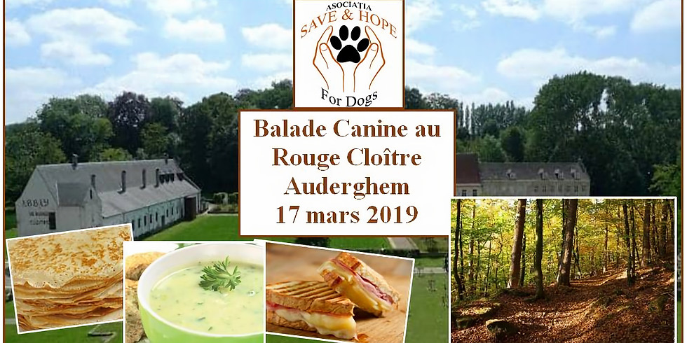 3ème journée SAVE & HOPE - Balade canine