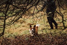 HundeschuleFatimaTakruri58.jpg