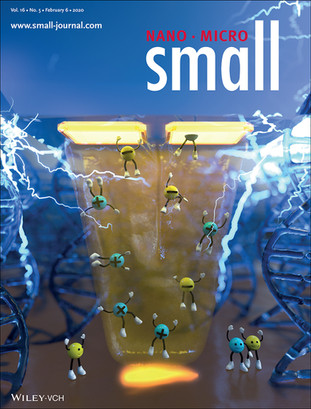 "Nadya's paper on the Electrokinetic Scanning Probe featured on the cover of ""small"""