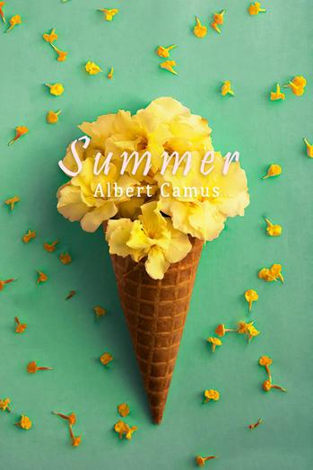 WEBSITE SUMMER.jpg