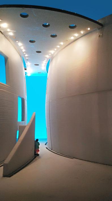 Atrium wallwashe Study