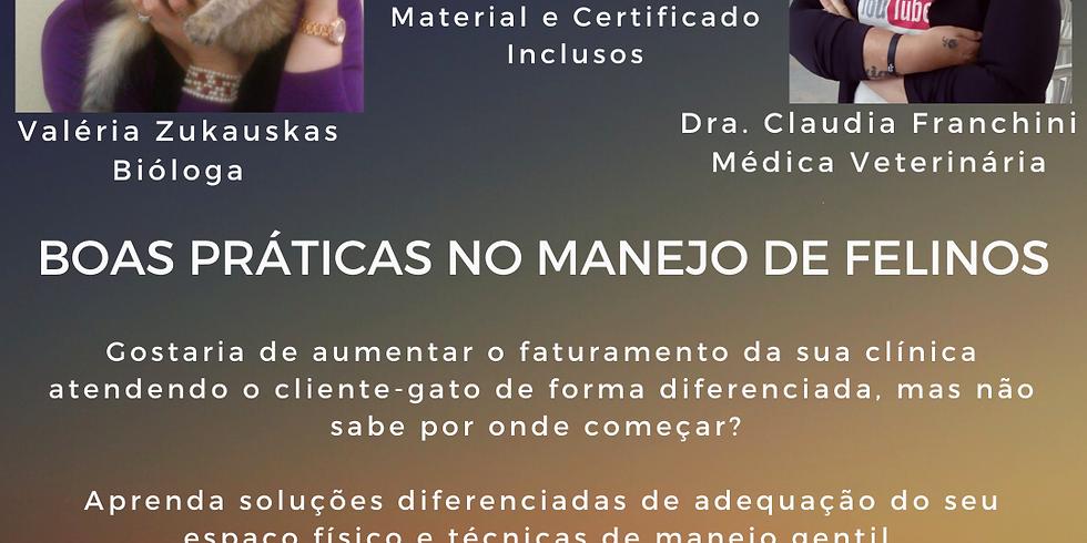BOAS PRÁTICAS NO MANEJO DE FELINOS - DA RECEPÇÃO À SALA DE CIRURGIA