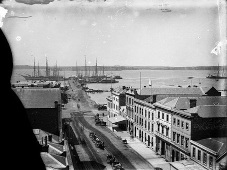 How Did Auckland City - NZ Look in 1882?