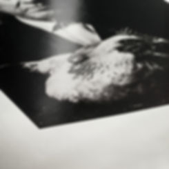 hahnemuehle photo rag baryta 315g closeu
