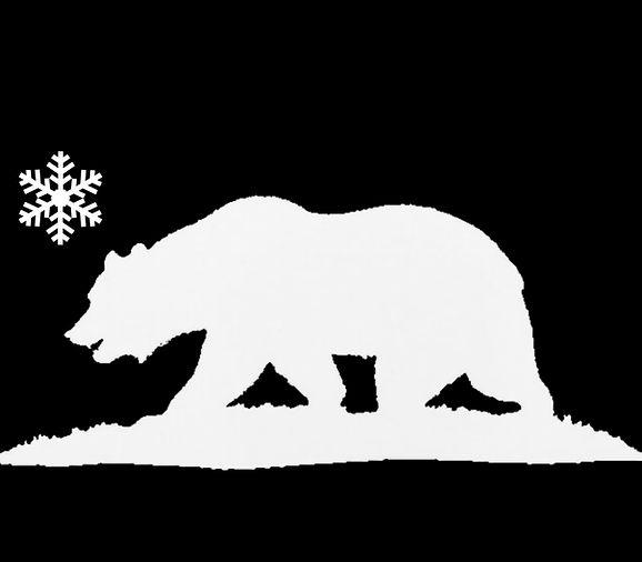 white icebox bear.jpg