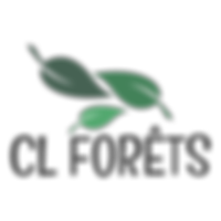 logo CL FORETS.png