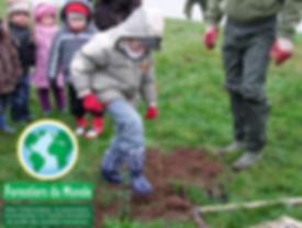 ONG forestiersdu monde blog de branches en branches clement lachaud