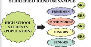 Stratified Random Sample vs Cluster Sample