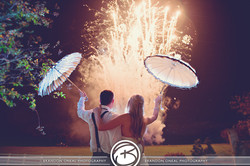 Professional Fireworks Displays