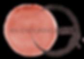 AEL logo.png
