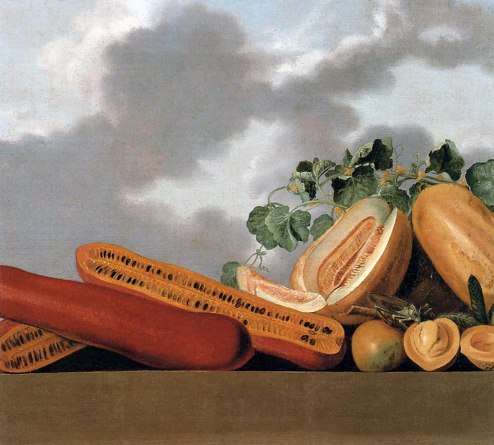 Albert Eckhout (1610 - 1666) - Abóboras e Melões