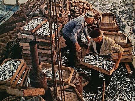 Escabeche da Iaia e a história da sardinha