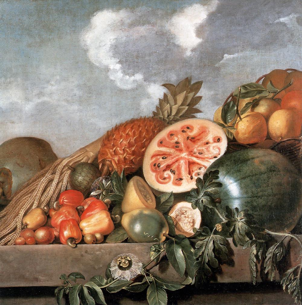 Albert Eckhout (1610 - 1666) - Frutas brasileiras
