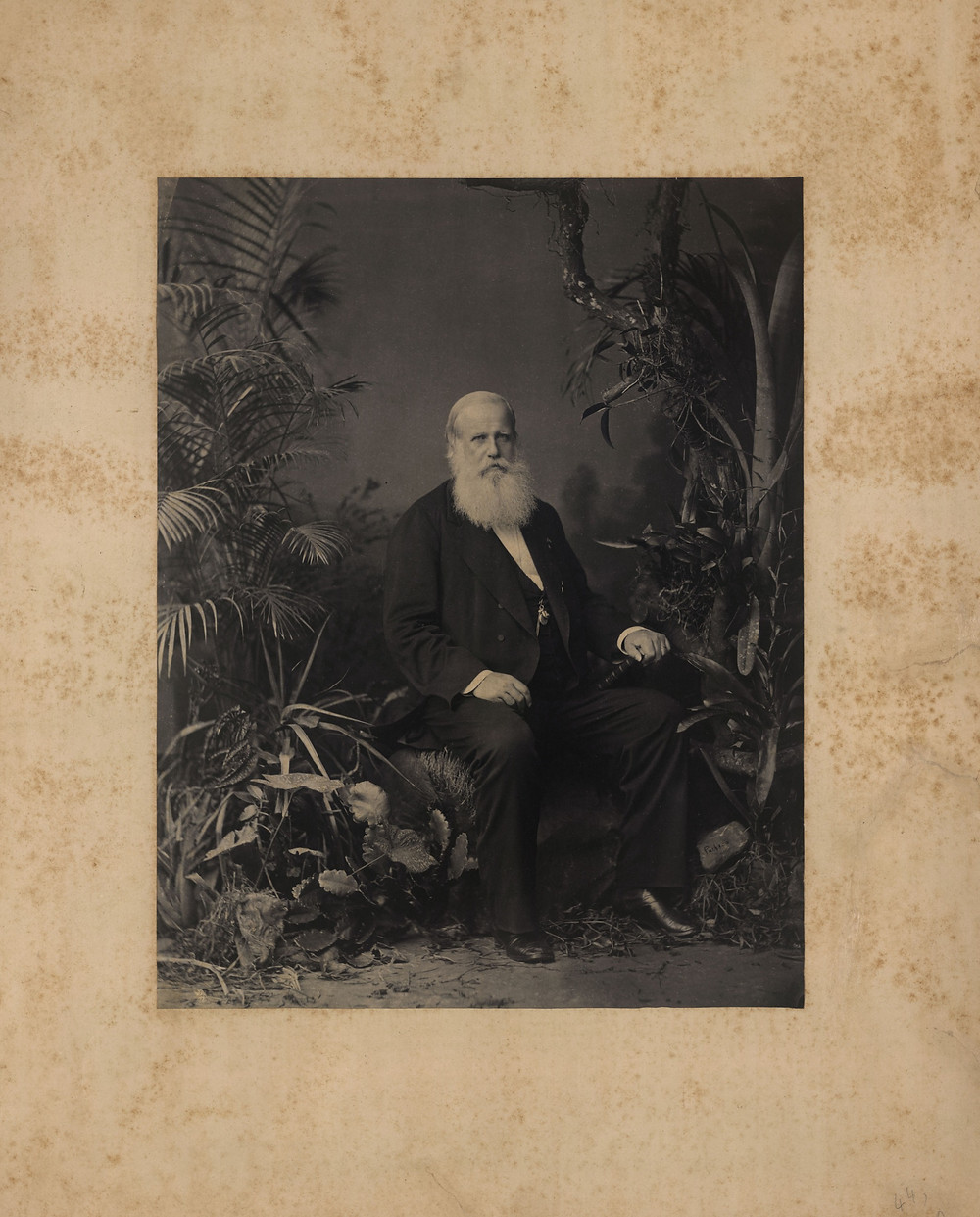 Pedro II, 1883. Acervo FBN.