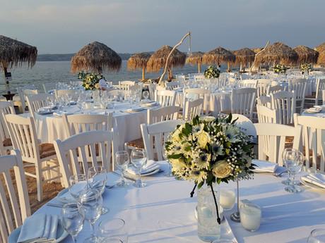 Γάμος με δεντράκια από μπλέ και λευκά άνθη