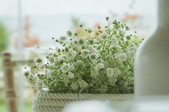 Zarnten Flowers Spetses